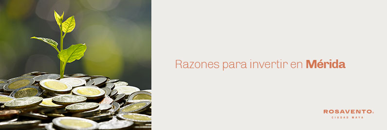 Razones-para-invertir-en-Merida_banner